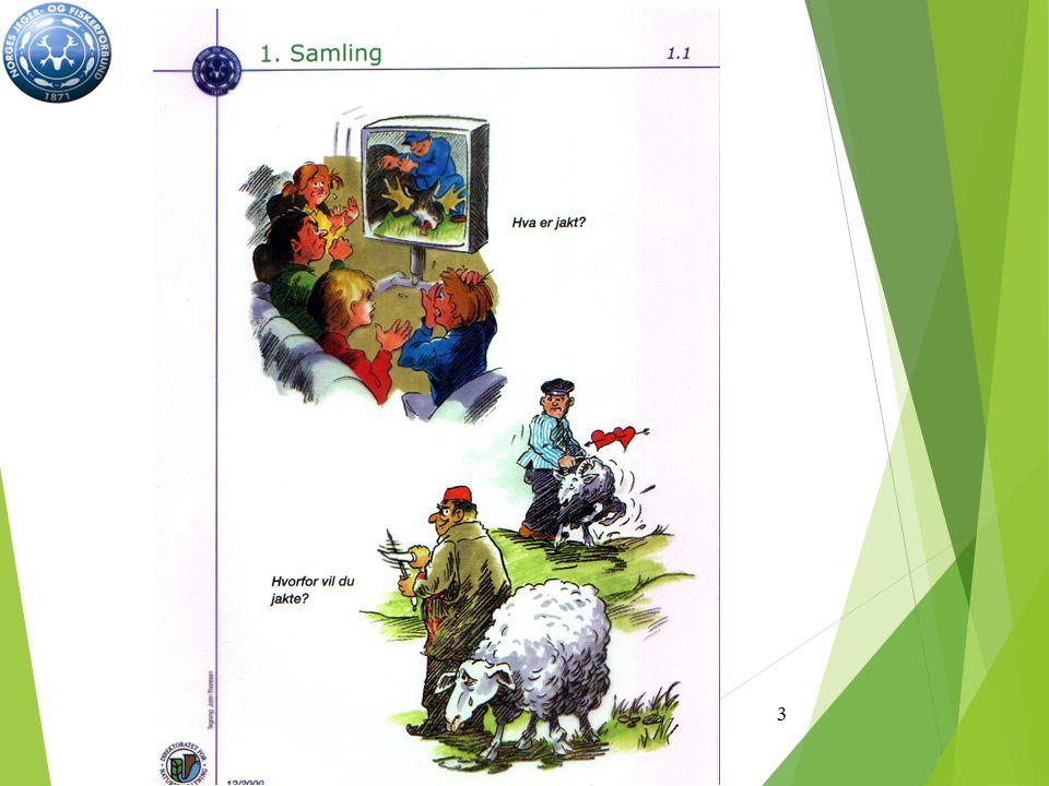 Alminnelige jaktregler 12 hovedpunkter vi må kunne og følge under praktisk jakt: 1.