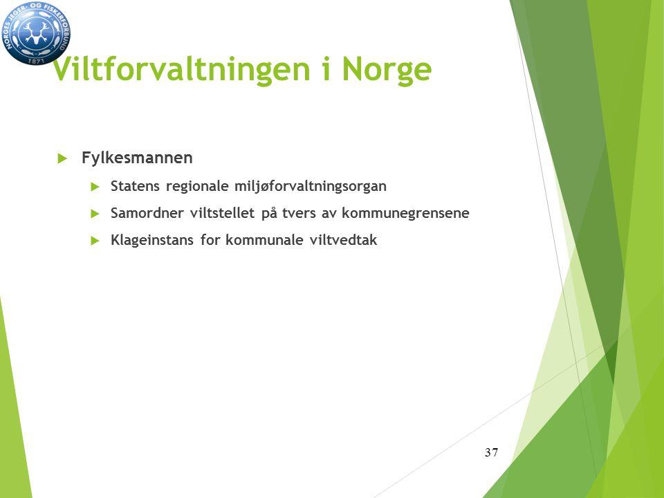 Viltforvaltningen i Norge  Fylkesmannen  Statens regionale miljøforvaltningsorgan  Samordner viltstellet på tvers av kommunegrensene  Klageinstans for kommunale viltvedtak 37