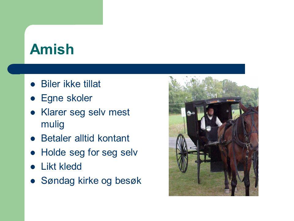 Amish Biler ikke tillat Egne skoler Klarer seg selv mest mulig Betaler alltid kontant Holde seg for seg selv Likt kledd Søndag kirke og besøk