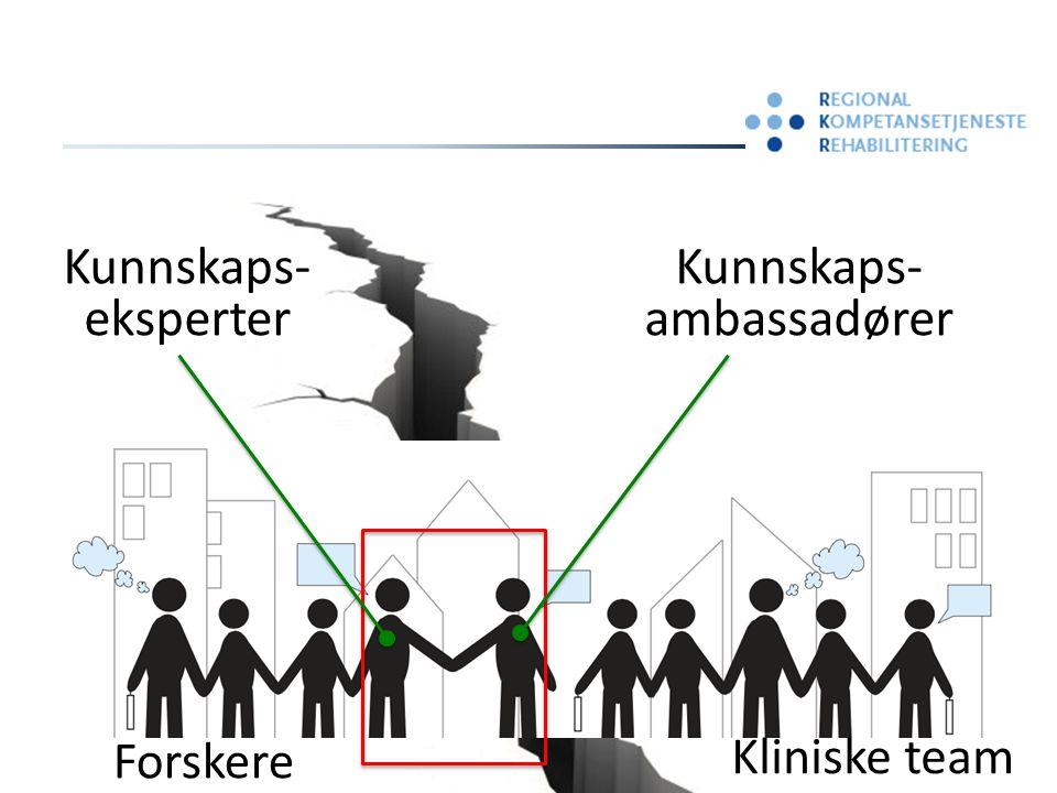 Kunnskaps- ambassadører Kunnskaps- eksperter Forskere Kliniske team
