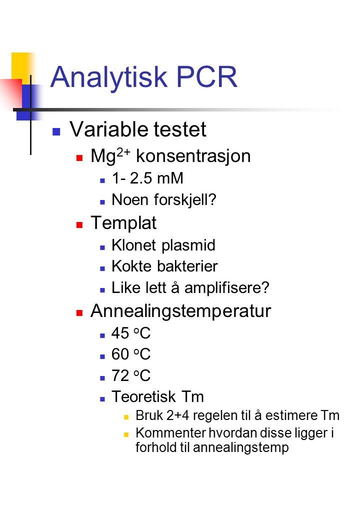 Analytisk PCR Variable testet Mg 2+ konsentrasjon 1- 2.5 mM Noen forskjell.