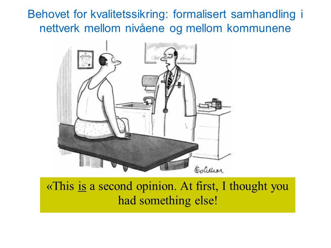 «This is a second opinion. At first, I thought you had something else! Behovet for kvalitetssikring: formalisert samhandling i nettverk mellom nivåene