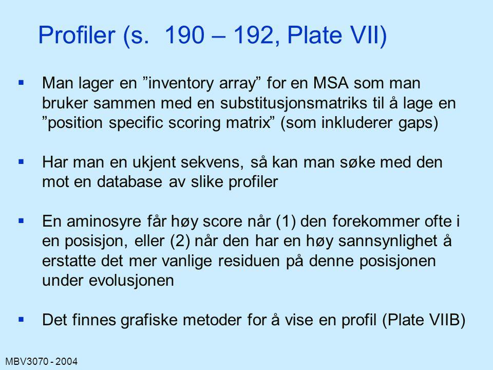 MBV3070 - 2004 Profiler (s.