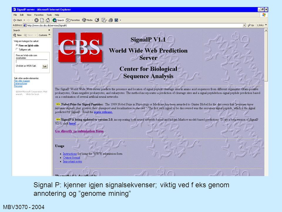MBV3070 - 2004 Signal P: kjenner igjen signalsekvenser; viktig ved f eks genom annotering og genome mining