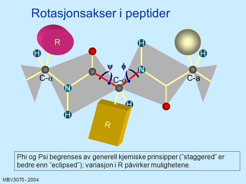 MBV3070 - 2004 H C-a H H Rotasjonsakser i peptider R C-  N R H H R N  Phi og Psi begrenses av generell kjemiske prinsipper ( staggered er bedre enn eclipsed ); variasjon i R påvirker mulighetene.
