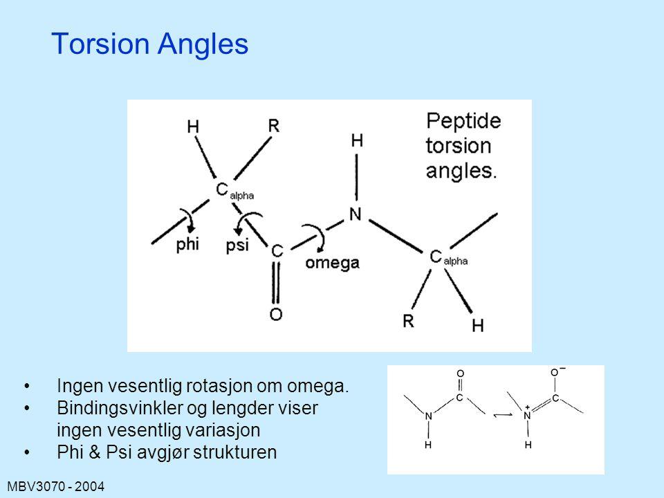 MBV3070 - 2004 Torsion Angles Ingen vesentlig rotasjon om omega.