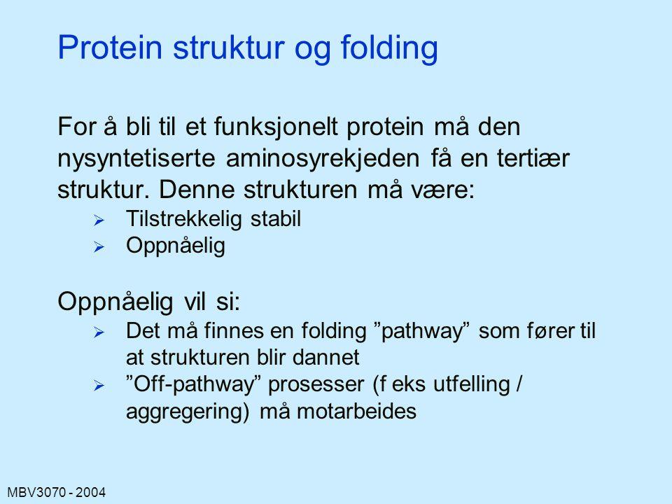 MBV3070 - 2004 Protein struktur og folding For å bli til et funksjonelt protein må den nysyntetiserte aminosyrekjeden få en tertiær struktur.