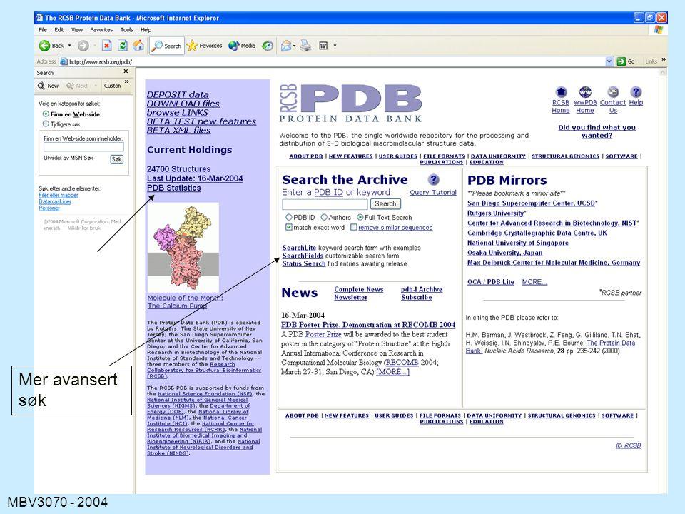 MBV3070 - 2004 Mer avansert søk