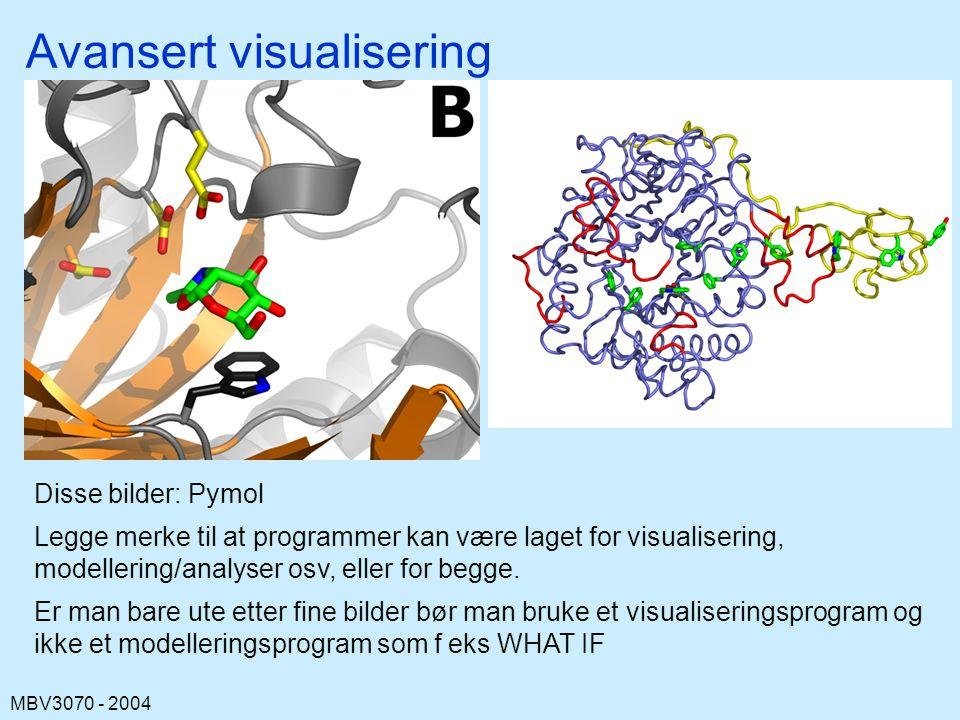 MBV3070 - 2004 Avansert visualisering Disse bilder: Pymol Legge merke til at programmer kan være laget for visualisering, modellering/analyser osv, eller for begge.