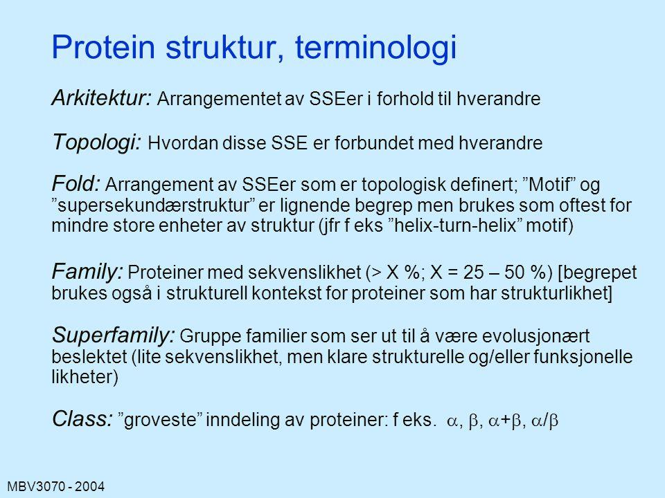 MBV3070 - 2004 Protein struktur, terminologi Arkitektur: Arrangementet av SSEer i forhold til hverandre Topologi: Hvordan disse SSE er forbundet med hverandre Fold: Arrangement av SSEer som er topologisk definert; Motif og supersekundærstruktur er lignende begrep men brukes som oftest for mindre store enheter av struktur (jfr f eks helix-turn-helix motif) Family: Proteiner med sekvenslikhet (> X %; X = 25 – 50 %) [begrepet brukes også i strukturell kontekst for proteiner som har strukturlikhet] Superfamily: Gruppe familier som ser ut til å være evolusjonært beslektet (lite sekvenslikhet, men klare strukturelle og/eller funksjonelle likheter) Class: groveste inndeling av proteiner: f eks.