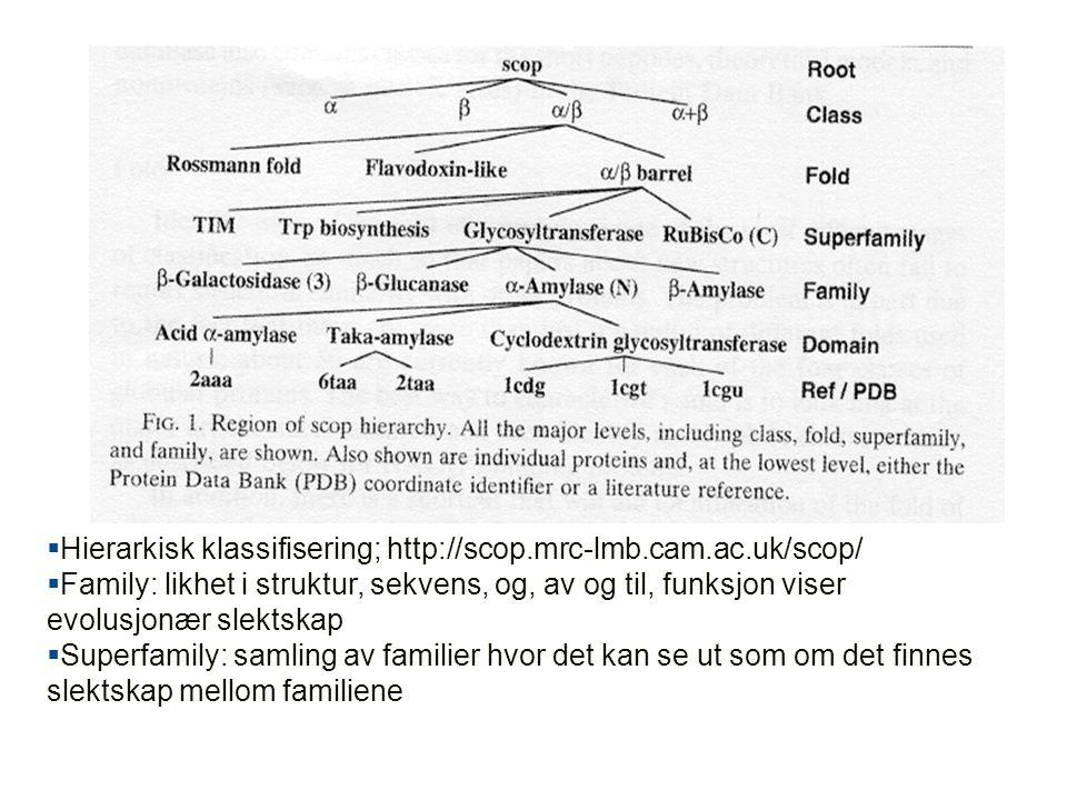  Hierarkisk klassifisering; http://scop.mrc-lmb.cam.ac.uk/scop/  Family: likhet i struktur, sekvens, og, av og til, funksjon viser evolusjonær slektskap  Superfamily: samling av familier hvor det kan se ut som om det finnes slektskap mellom familiene
