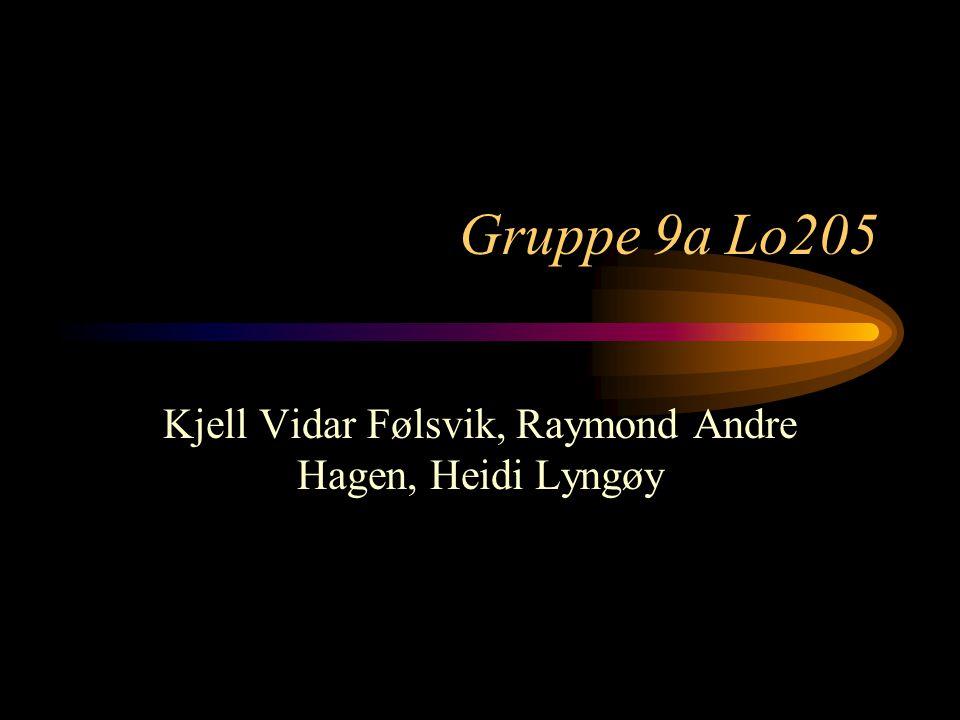 Gruppe 9a Lo205 Kjell Vidar Følsvik, Raymond Andre Hagen, Heidi Lyngøy