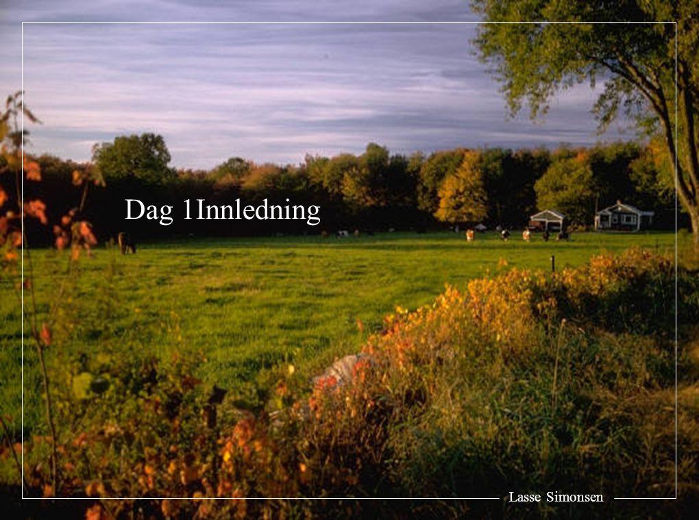 Lasse Simonsen Dag 1Innledning
