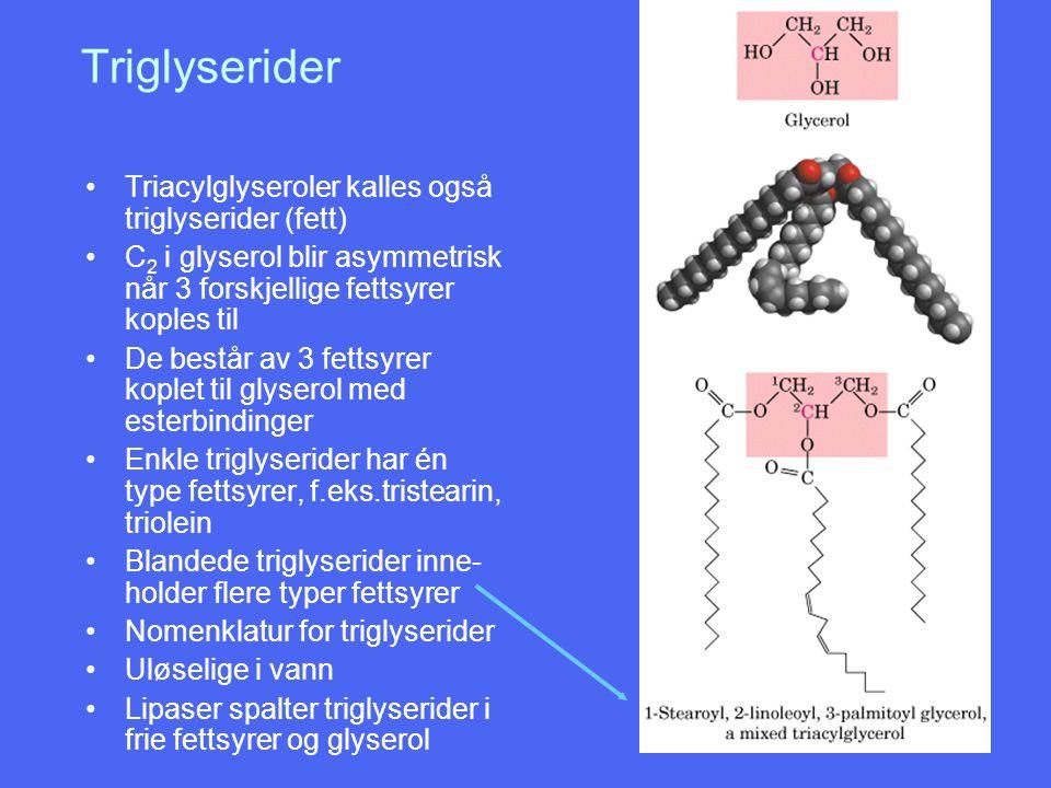 Triglyserider Triacylglyseroler kalles også triglyserider (fett) C 2 i glyserol blir asymmetrisk når 3 forskjellige fettsyrer koples til De består av