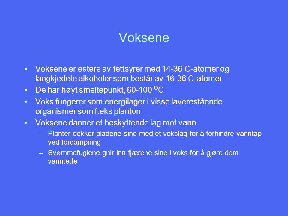 Voksene Voksene er estere av fettsyrer med 14-36 C-atomer og langkjedete alkoholer som består av 16-36 C-atomer De har høyt smeltepunkt, 60-100 o C Vo
