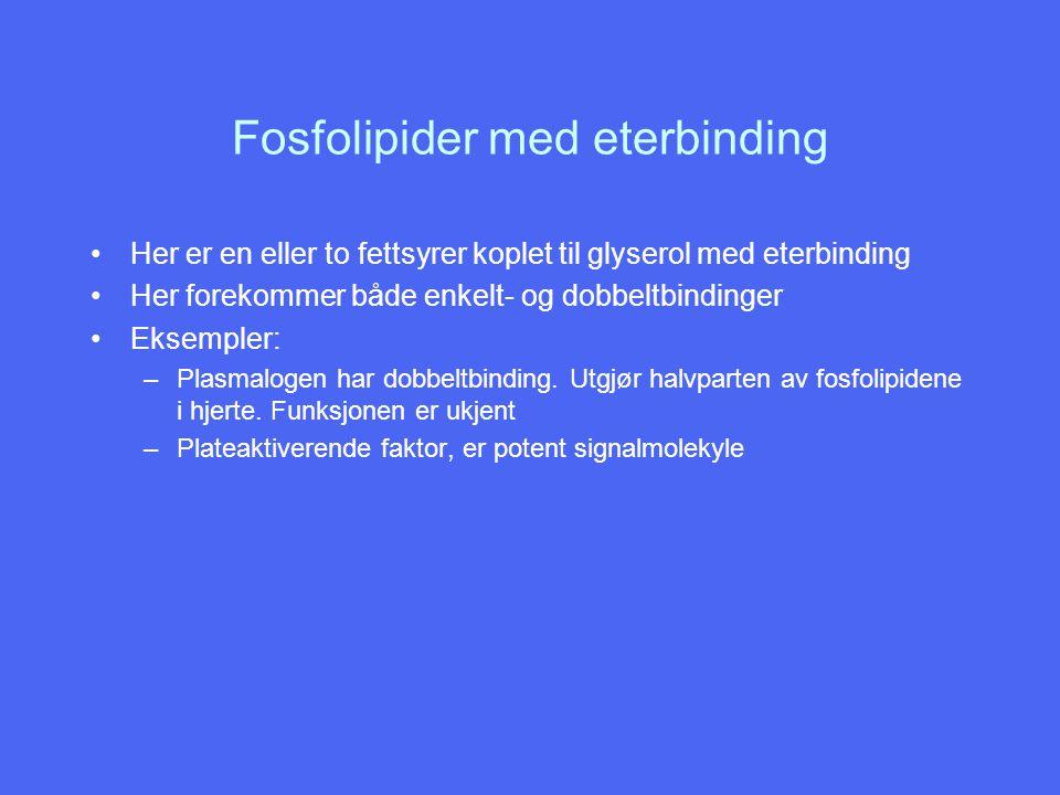 Fosfolipider med eterbinding Her er en eller to fettsyrer koplet til glyserol med eterbinding Her forekommer både enkelt- og dobbeltbindinger Eksemple