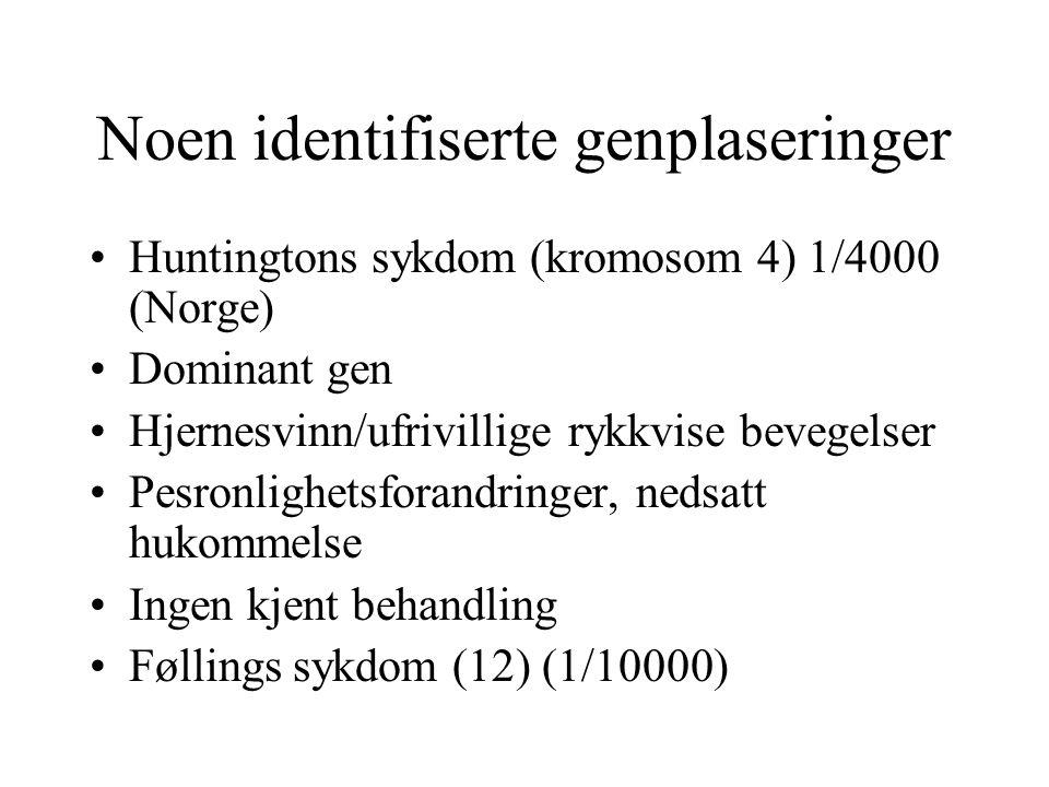 Noen identifiserte genplaseringer Huntingtons sykdom (kromosom 4) 1/4000 (Norge) Dominant gen Hjernesvinn/ufrivillige rykkvise bevegelser Pesronlighetsforandringer, nedsatt hukommelse Ingen kjent behandling Føllings sykdom (12) (1/10000)