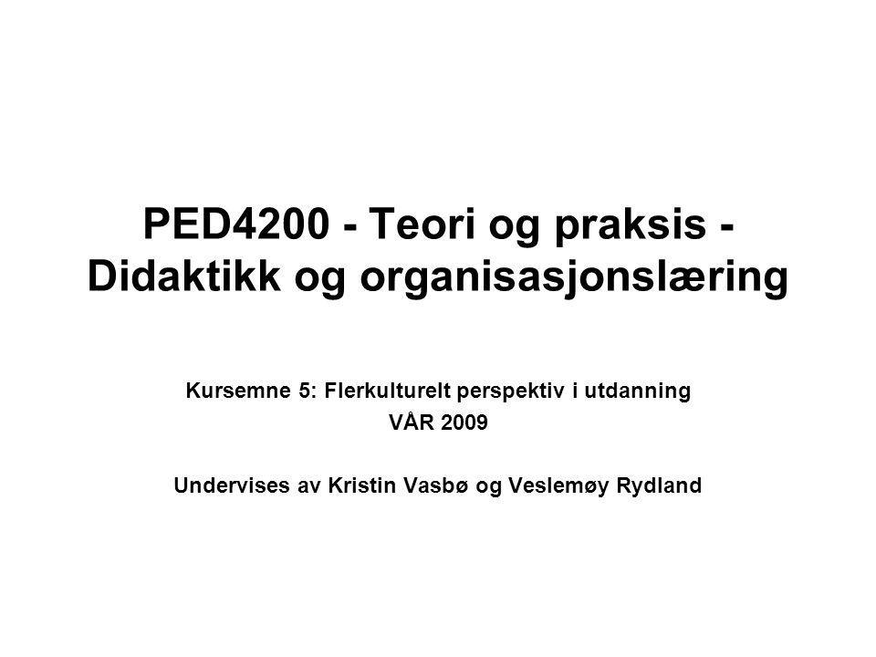 PED4200 - Teori og praksis - Didaktikk og organisasjonslæring Kursemne 5: Flerkulturelt perspektiv i utdanning VÅR 2009 Undervises av Kristin Vasbø og Veslemøy Rydland