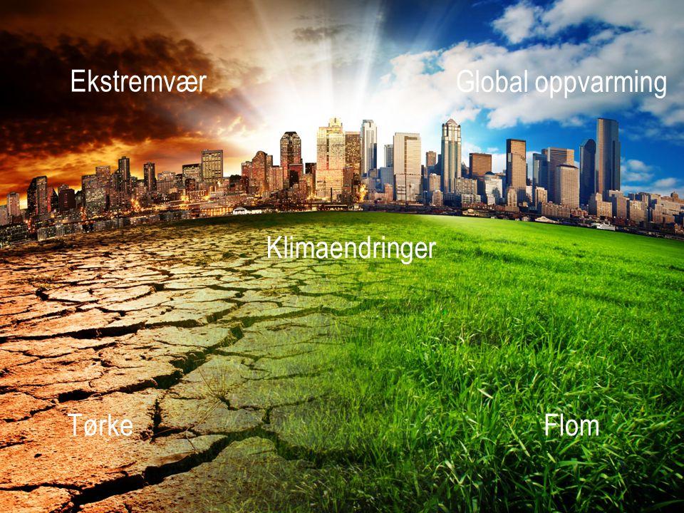 Klimaendringer TørkeFlom Ekstremvær Global oppvarming