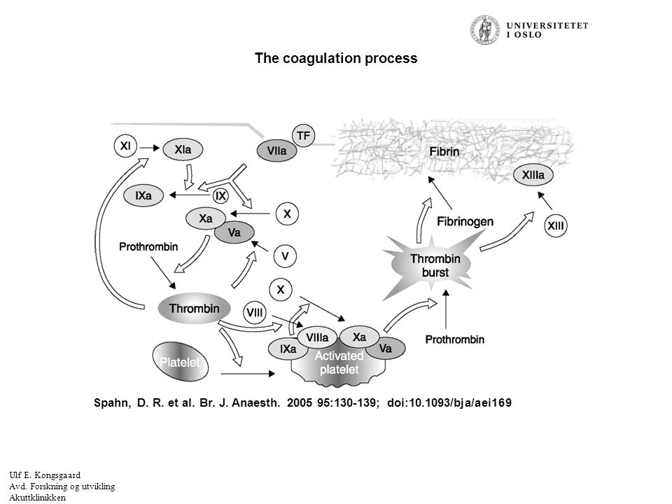 Felt for signatur (enhet, navn og tittel) Spahn, D. R. et al. Br. J. Anaesth. 2005 95:130-139; doi:10.1093/bja/aei169 The coagulation process Ulf E. K