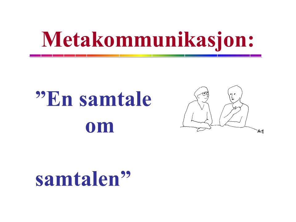 Metakommunikasjon: En samtale om samtalen