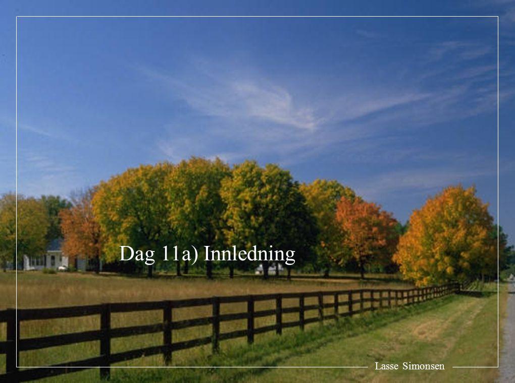 Lasse Simonsen Dag 11a) Innledning