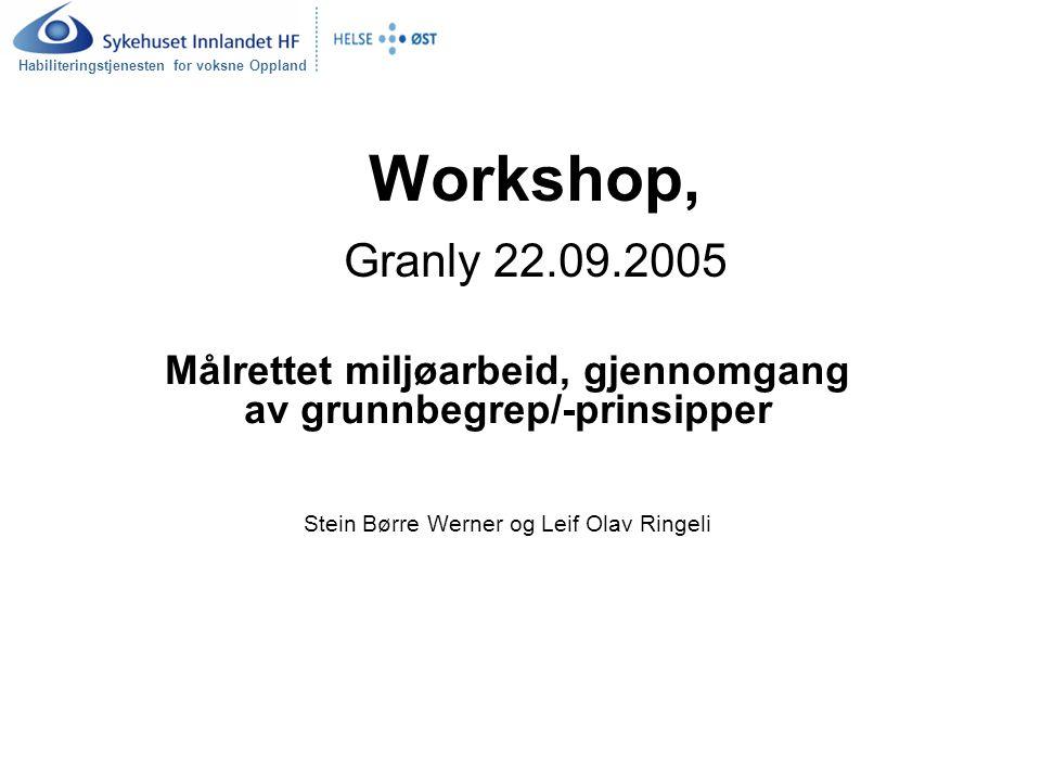Habiliteringstjenesten for voksne Oppland Workshop, Granly 22.09.2005 Målrettet miljøarbeid, gjennomgang av grunnbegrep/-prinsipper Stein Børre Werner