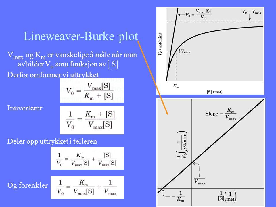 Lineweaver-Burke plot V max og K m er vanskelige å måle når man avbilder V o som funksjon av S Derfor omformer vi uttrykket Innverterer Deler opp uttr