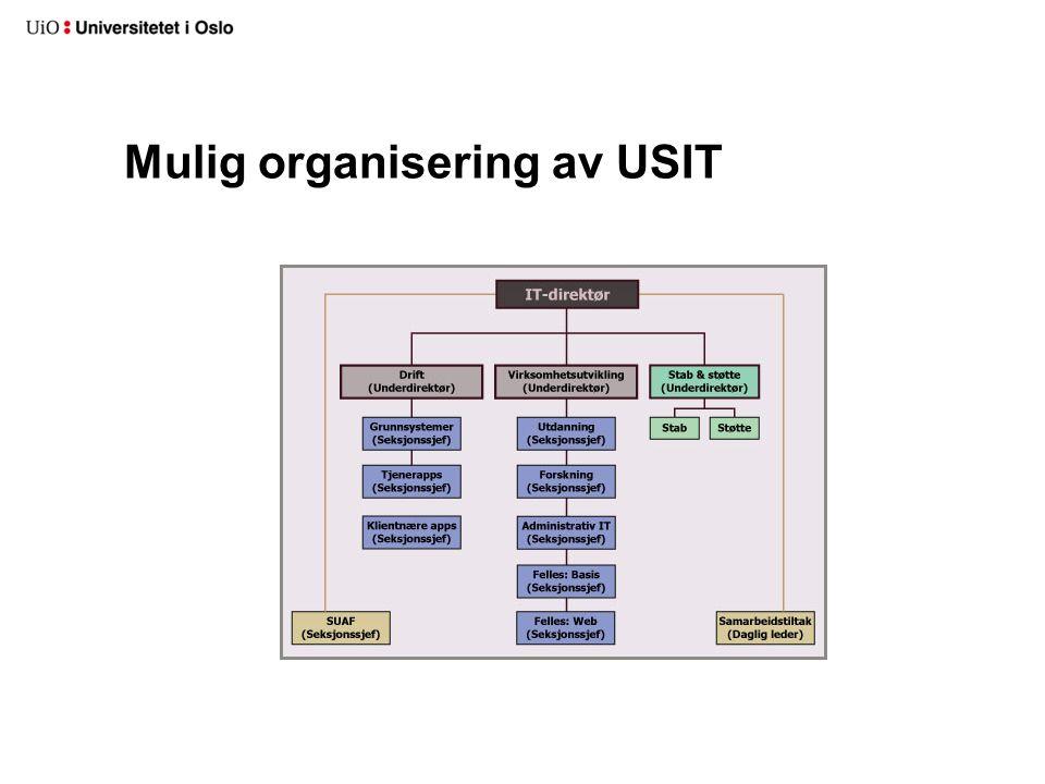 Mulig organisering av USIT