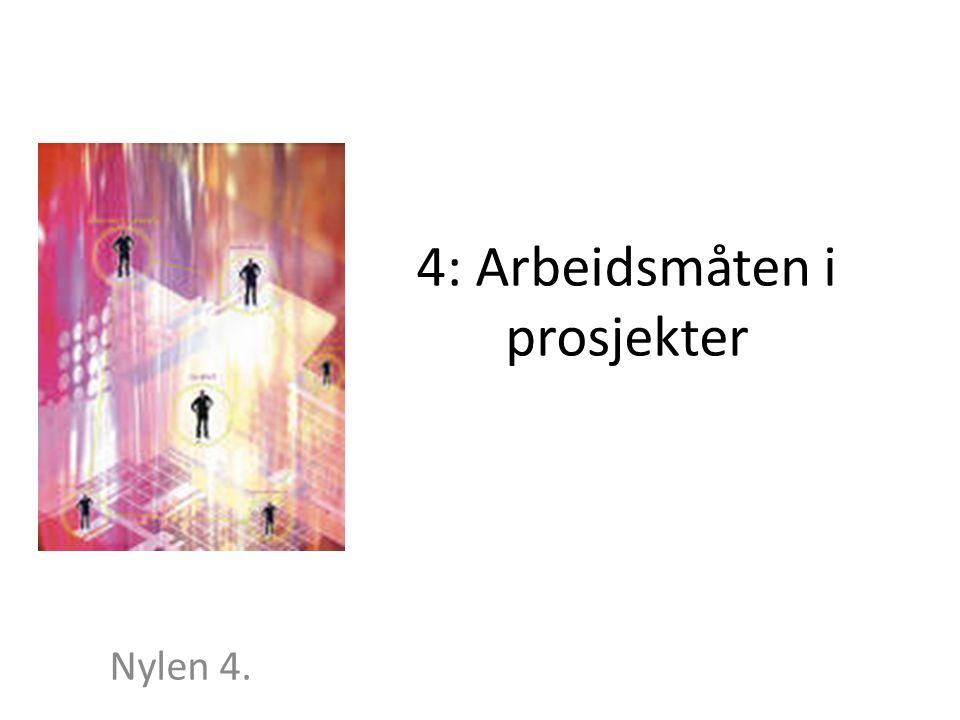 4: Arbeidsmåten i prosjekter Nylen 4.