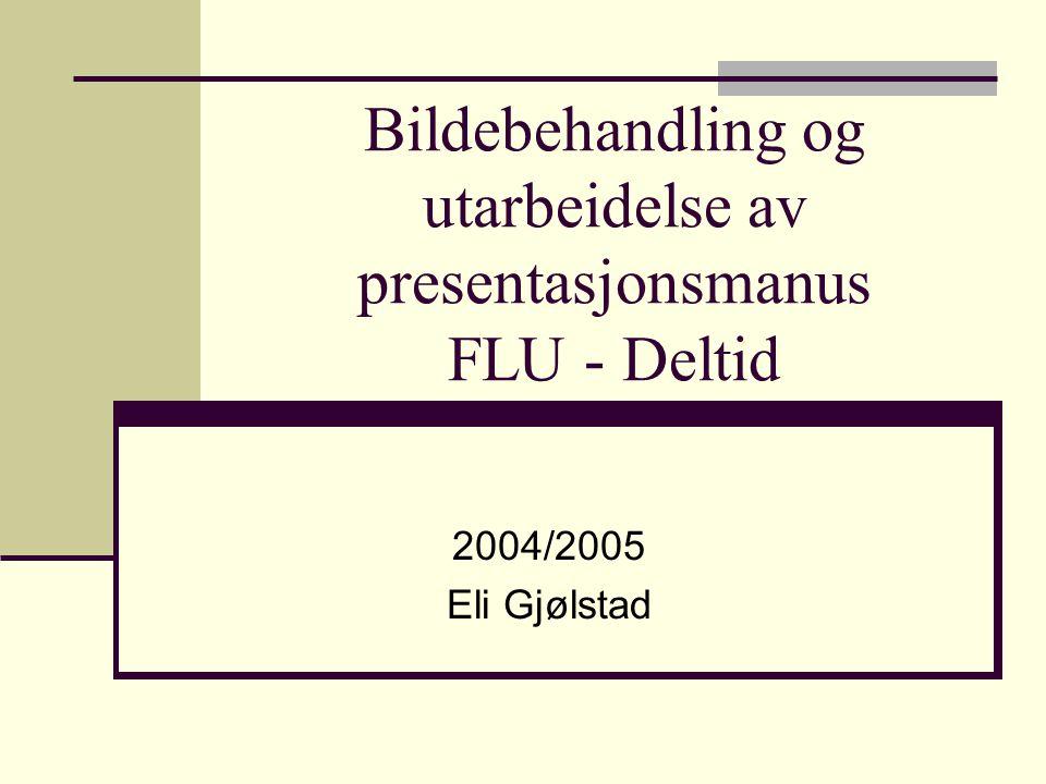 Bildebehandling og utarbeidelse av presentasjonsmanus FLU - Deltid 2004/2005 Eli Gjølstad