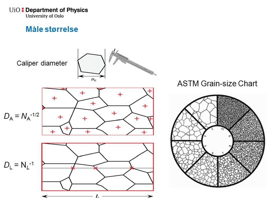 Måle størrelse Caliper diameter D A = N A -1/2 D L = N L -1 ASTM Grain-size Chart