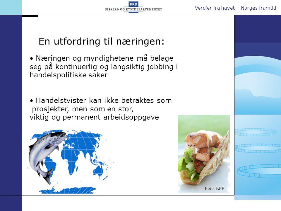 Verdier fra havet – Norges framtid En utfordring til næringen: Næringen og myndighetene må belage seg på kontinuerlig og langsiktig jobbing i handelspolitiske saker Handelstvister kan ikke betraktes som prosjekter, men som en stor, viktig og permanent arbeidsoppgave Foto: EFF