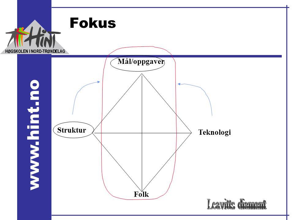 www.hint.no Fokus Struktur Mål/oppgaver Teknologi Folk
