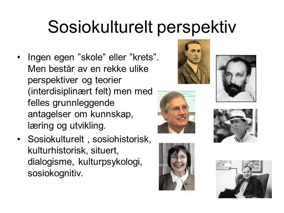 """Sosiokulturelt perspektiv Ingen egen """"skole"""" eller """"krets"""". Men består av en rekke ulike perspektiver og teorier (interdisiplinært felt) men med felle"""