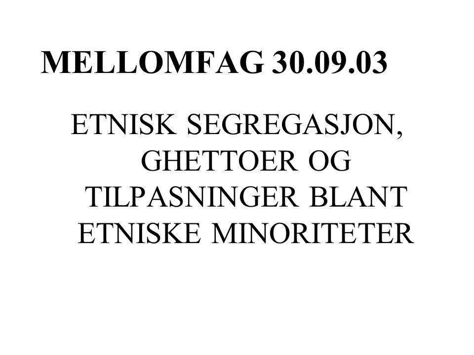 MELLOMFAG 30.09.03 ETNISK SEGREGASJON, GHETTOER OG TILPASNINGER BLANT ETNISKE MINORITETER