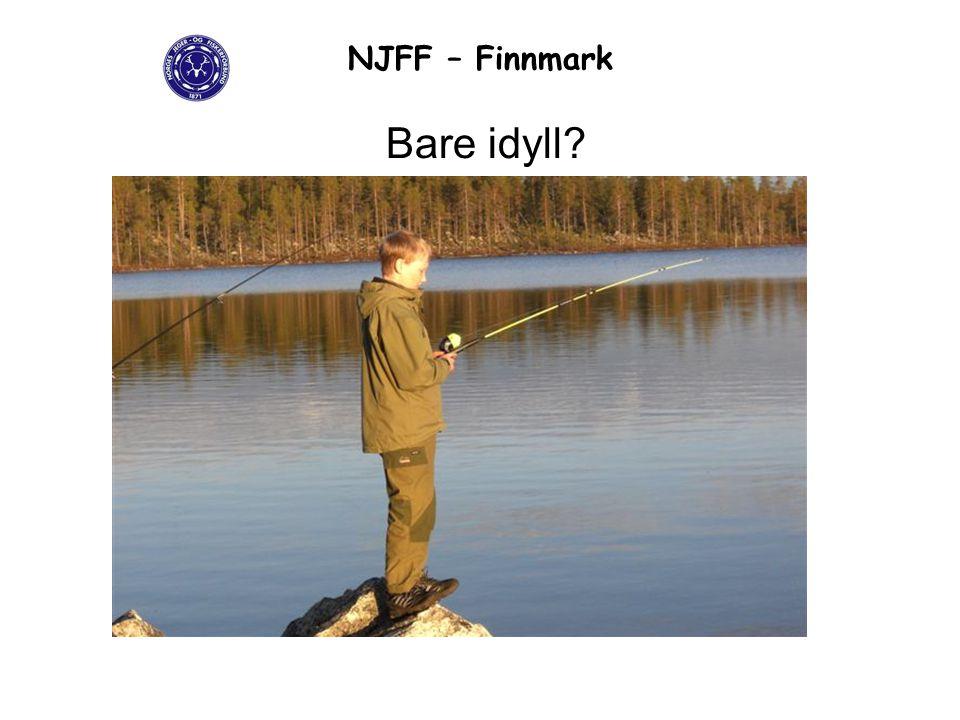 NJFF – Finnmark Bare idyll?