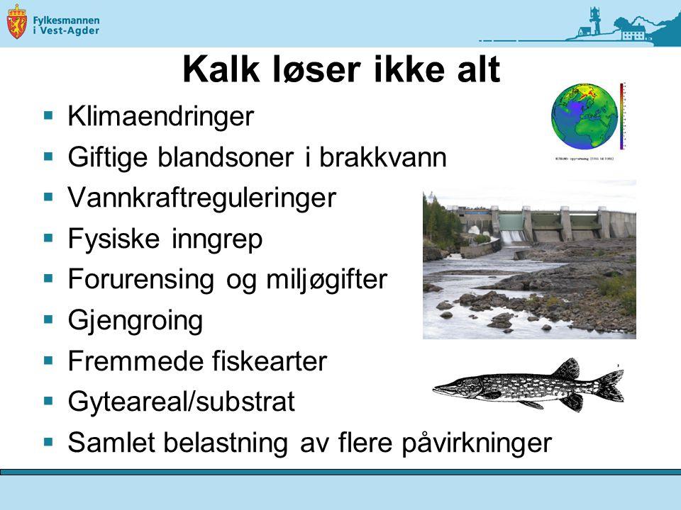 Kalk løser ikke alt  Klimaendringer  Giftige blandsoner i brakkvann  Vannkraftreguleringer  Fysiske inngrep  Forurensing og miljøgifter  Gjengroing  Fremmede fiskearter  Gyteareal/substrat  Samlet belastning av flere påvirkninger