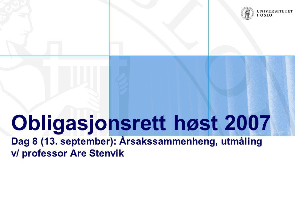 Obligasjonsrett høst 2007 Dag 8 (13.