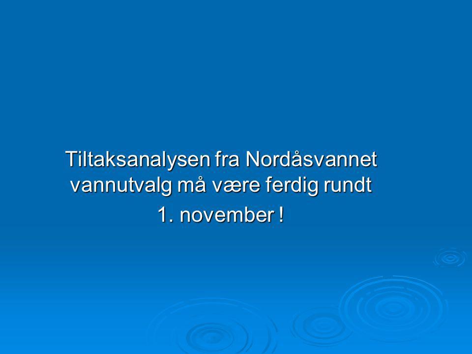 Tiltaksanalysen fra Nordåsvannet vannutvalg må være ferdig rundt 1. november !