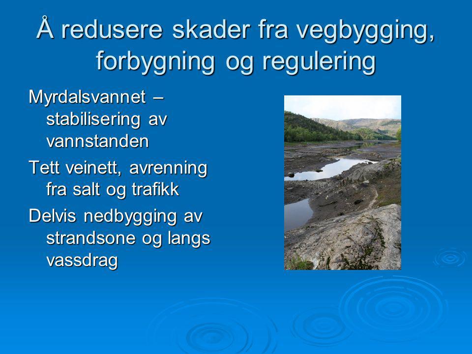 Å redusere skader fra vegbygging, forbygning og regulering Myrdalsvannet – stabilisering av vannstanden Tett veinett, avrenning fra salt og trafikk De