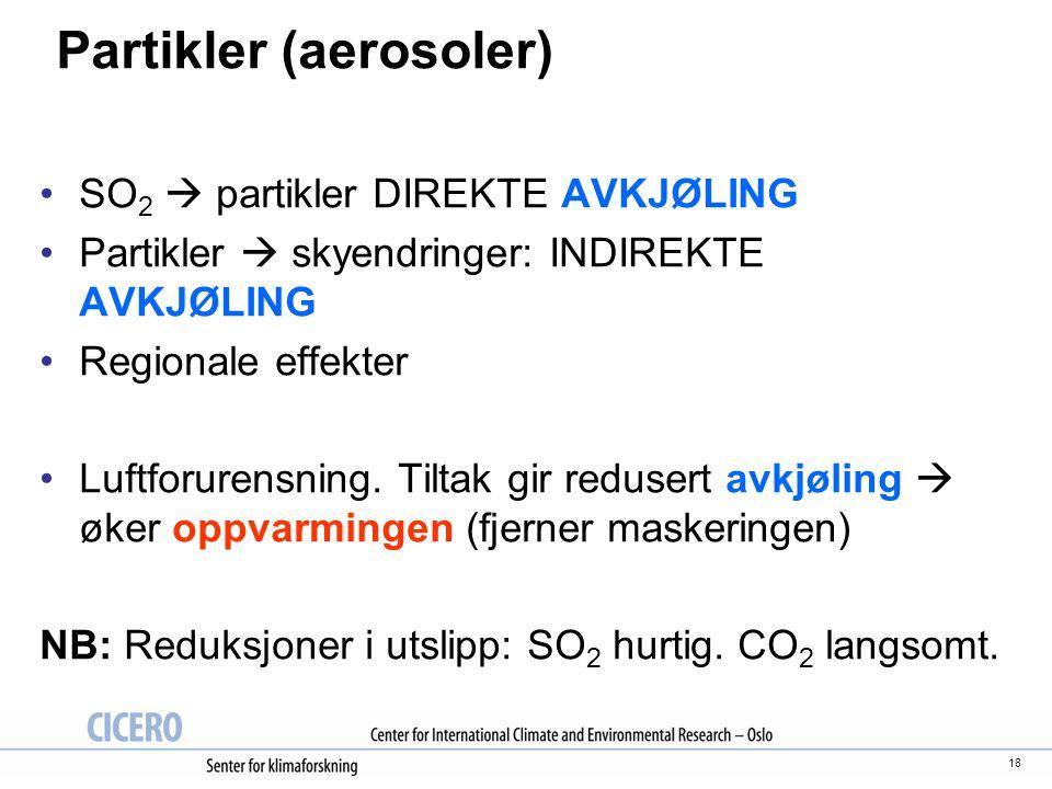 18 Partikler (aerosoler) SO 2  partikler DIREKTE AVKJØLING Partikler  skyendringer: INDIREKTE AVKJØLING Regionale effekter Luftforurensning. Tiltak