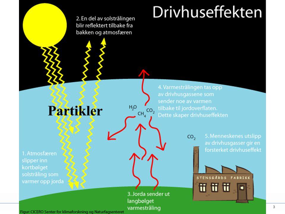 3 Partikler