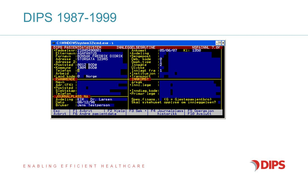 DIPS 1987-1999