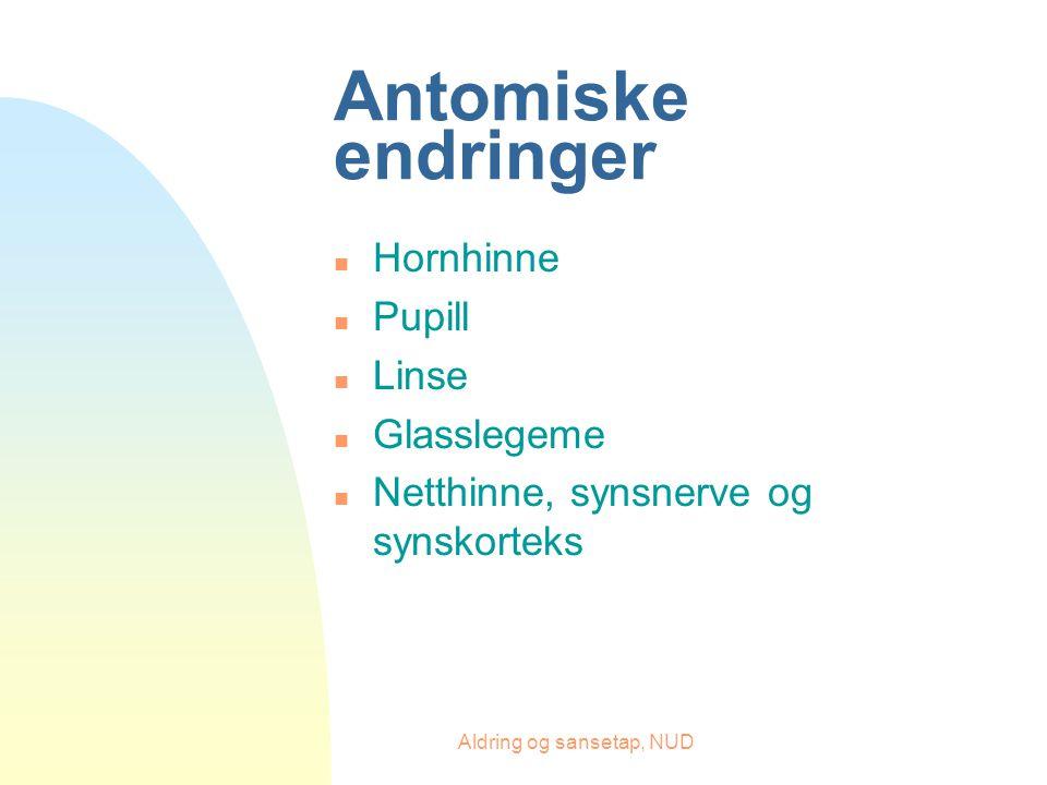 Aldring og sansetap, NUD Antomiske endringer n Hornhinne n Pupill n Linse n Glasslegeme n Netthinne, synsnerve og synskorteks