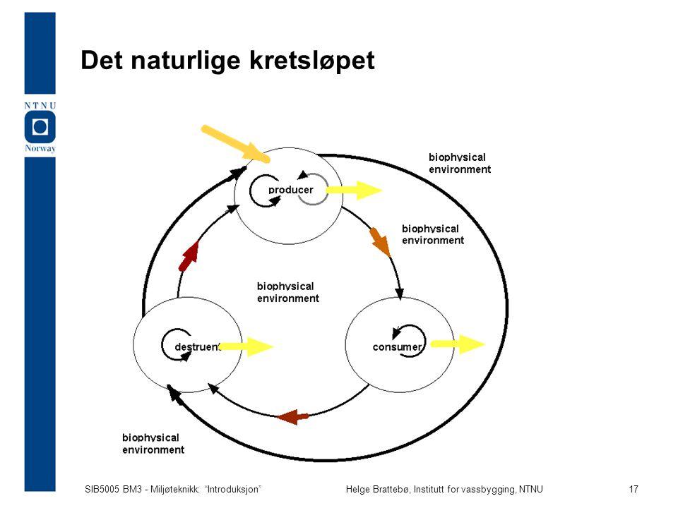 SIB5005 BM3 - Miljøteknikk: Introduksjon Helge Brattebø, Institutt for vassbygging, NTNU 17 Det naturlige kretsløpet