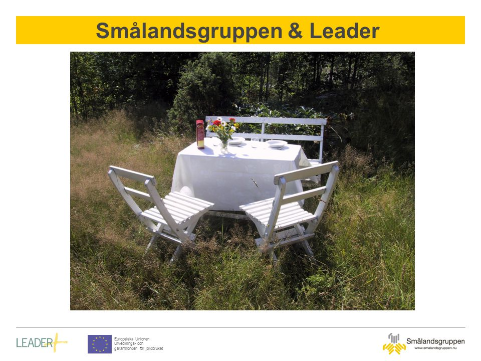 Smålandsgruppen & Leader Europeiska Unionen Utvecklings- och garantifonden för jordbruket Common factors in the area Three counties, Jönköping, Kronoberg and Kalmar - the highland region of southern Sweden Municipalities in the middle of Småland with decreasing population Common cultural character Structure funds in the area LEADER II experience & new areas The Kingdoms of Wood, Aluminium and Crystal