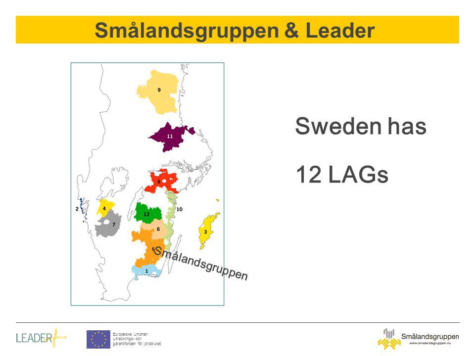 Smålandsgruppen & Leader Europeiska Unionen Utvecklings- och garantifonden för jordbruket Co-financing Goods Services Hard cash