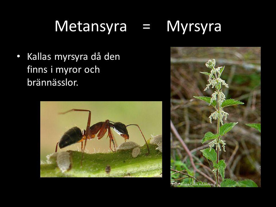 Metansyra = Myrsyra Kallas myrsyra då den finns i myror och brännässlor.