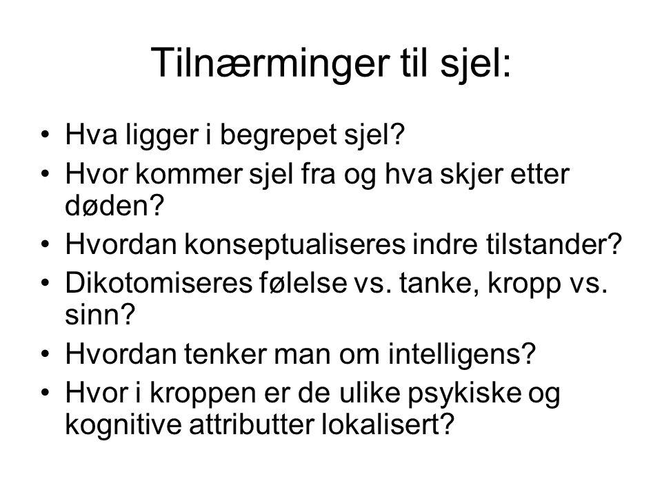 Artikkel 9: Bangstad og Assal: Unni Wikan og multikulturalismens utfordringer.